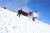 100.01.23合歡山撲向雪地動畫:1070873067.jpg