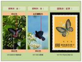 蝴蝶100:20190216曙鳳蝶雌雄和郵票_640.jpg