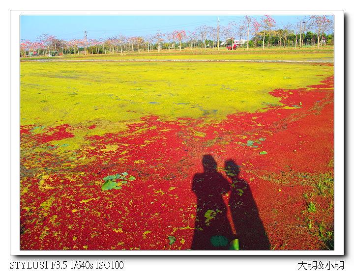 台南100:P2110022_title.jpg
