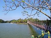 新化虎頭埤:虎月吊橋全景