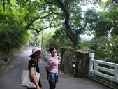 2011陽明山:CIMG4154.jpg