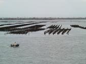 嘉義東石漁人碼頭:CIMG4716.JPG