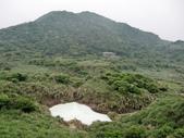 2011陽明山:CIMG4254.JPG