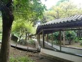 至善園、龍山寺:CIMG7413.JPG