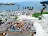 蘭嶼行:CIMG7689-1024.jpg