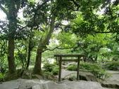 2011陽明山:CIMG4198.JPG
