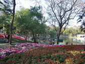 台南市2013百花祭:CIMG6403.JPG
