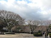 韓國濟州島之旅:IMG_3271.JPG