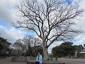 韓國濟州島之旅:IMG_3283.JPG