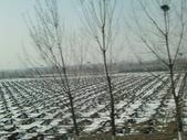 天津:CIMG2507.jpg