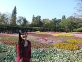 台南市2013百花祭:CIMG6373-1024.jpg