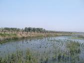 屏東縣崎峰社區及濕地:CIMG4482.JPG