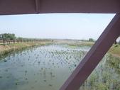 屏東縣崎峰社區及濕地:CIMG4484.JPG