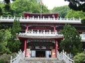 2011陽明山:CIMG4183.JPG