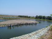 屏東縣崎峰社區及濕地:CIMG4487.JPG