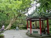 2011陽明山:CIMG4191.JPG