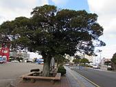 韓國濟州島之旅:IMG_3232.JPG