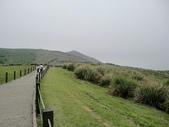 2011陽明山:CIMG4296.JPG