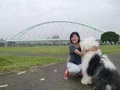基隆河自行車道:CIMG0919-1024.jpg