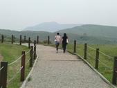 2011陽明山:CIMG4299.JPG