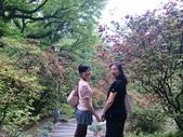 2011陽明山:CIMG4196.JPG