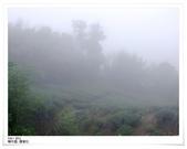 2012露營,嘉義阿里山雲景露營區:雲景營地-16.jpg