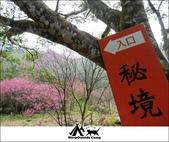 2014露營,苗栗南庄秘境露營:10.jpg