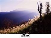2014露營,新竹五峰愛上喜翁:3.jpg