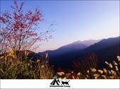 2014露營,新竹五峰愛上喜翁:5.jpg