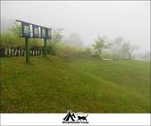 2014露營,苗栗泰安那那布荷:21.jpg