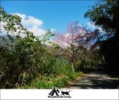 2014露營,新竹五峰愛上喜翁:7.jpg