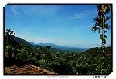 嘉義獨立山:DSC_7839