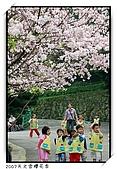 春櫻滿開天元宮:DSC_4165
