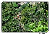 嘉義獨立山:DSC_7840