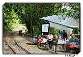 嘉義獨立山:DSC_7882