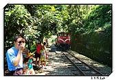 嘉義獨立山:DSC_7853