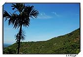 嘉義獨立山:DSC_7834
