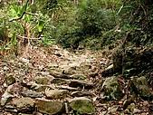 德芙蘭生態步道:20080113_7059.jpg