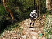 德芙蘭生態步道:20080113_7064.jpg