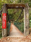德芙蘭生態步道:20080113_7066.jpg