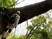 德芙蘭生態步道:20080113_7072.jpg