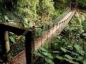 德芙蘭生態步道:20080113_7074.jpg
