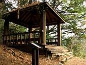 德芙蘭生態步道:20080113_7084.jpg