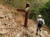 德芙蘭生態步道:20080113_7092.jpg