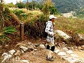 德芙蘭生態步道:20080113_7110.jpg