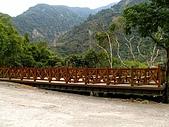 德芙蘭生態步道:20080113_7111.jpg