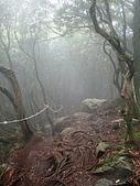 雲霧繚繞-鳶嘴稍來:IMG_8789.JPG