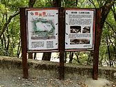 德芙蘭生態步道:20080113_7056.jpg