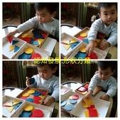 AA Play time:認知發展 顏色分類