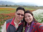 20101204銅鑼杭菊+客家大院:P1030932.JPG
